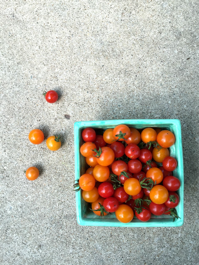 Summer Harvest Salad - Cherry Tomatoes