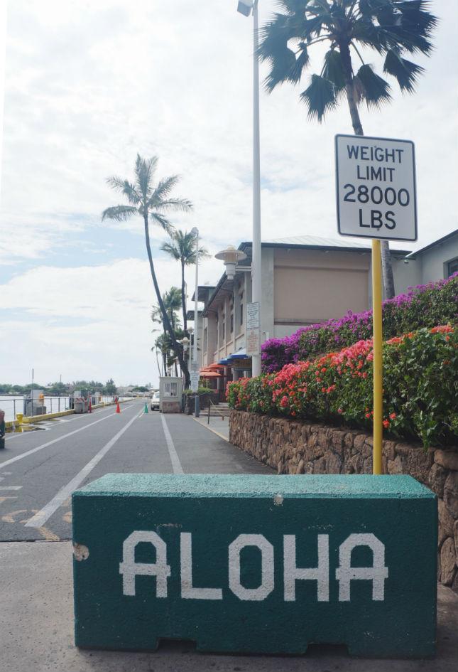 aloha entry